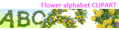 baner_flower