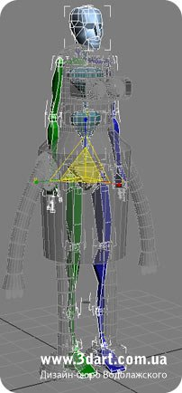 Biped - делаем и подгоняем скелет